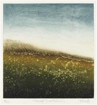 meadow grass (set of 4) by sheila benow