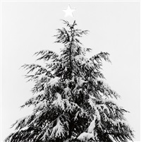 merry christmas (snow-covered fir tree with die-cut star) by robert mapplethorpe