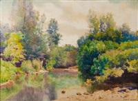 rivière dans un sous-bois by laurent sabon