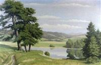 the river derwent, derbyshire hills by harris sangers