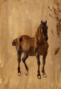 cheval (study) by jean voltaire huber