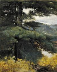 view at the artist's studio, kezar lake, maine by douglas volk