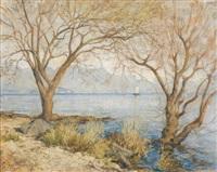 mattino d'inverno a riva di lago by giovanni cappa legora