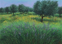campo fiorito by franco azzinari