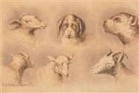 six têtes dont chiens, brebis et béliers by jan baptiste tetar van elven