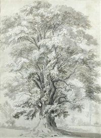 the great elm in lord suffolk's ground, wiltshire, a boundary tree known in the old maps of wiltshire by hendrik frans de cort