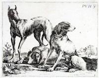 drei hunde, pl. 3 (from verschiedene hunde) by pauwels van hillegaert