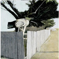 fence with trees and rock by david ligare