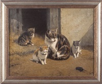 cats by hermann gustave simon