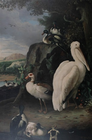 classical birds by g metsu