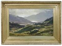 summer afternoon in lower glencoe by duncan cameron