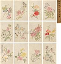 flower (album w/12 works) by xue baochen