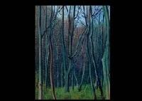 woods by rinjiro hasegawa
