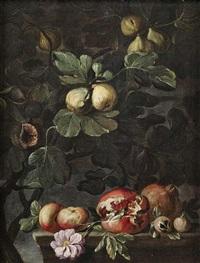 stilleben mit feigenbaum sowie äpfeln, rose und granatäpfeln auf einem steinpodest. stilleben mit weinstock sowie äpfeln, blüten und birnen auf einem steinpodest (pair) by abraham brueghel