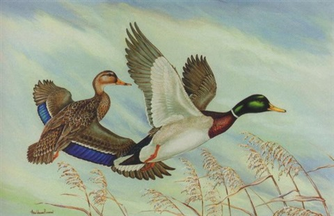 mallards by anne worsham richardson