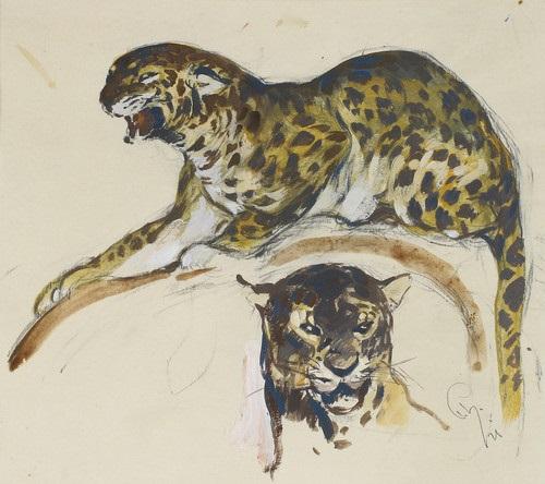 liegender leopard und leopardenkopf by paul haase