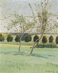 sommerliche wiese mit bäumen by julius jungheim