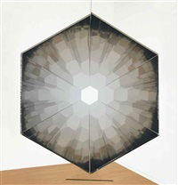 your compound eye by olafur eliasson