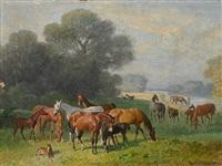 gestütspferde auf der weide by emil adam