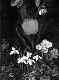 frühlingsblumen by anna maria andersen