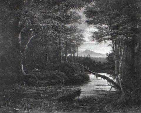 hirsch in waldlandschaft by james y gant