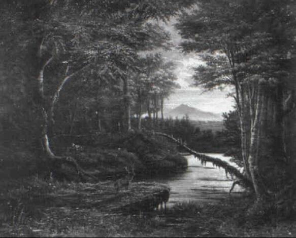 hirsch in waldlandschaft by james y. gant