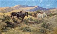 lesotho ponies by allerley glossop