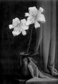stilleben mit weißer lilie und rotem tuch by richard wilhelm kempin
