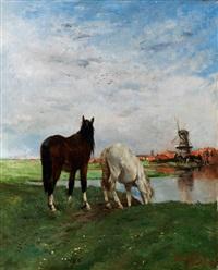 holländische landschaft mit zwei pferden am teichufer, mit windmühle im hintergrund by alfred jacques verwee