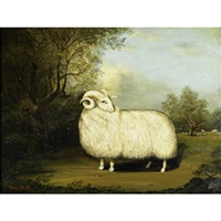 white ram by amos shontz