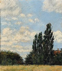 landscape study by knud agger