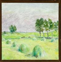 landscape by sigurd swane