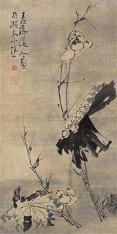 lotus by xun wei