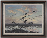 canada geese, coming in by harry curieux adamson
