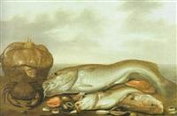 fische, krabben und andere seetiere sind wie ein stilleben ausgelegt by willem ormea