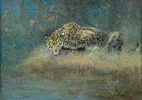 leopard by cuthbert edmund swan