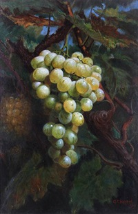 ripening muscatts by george f. harris