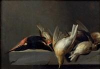 nature morte aux oiseaux by jan vonck