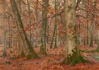 sous-bois en automne by charles lacoste