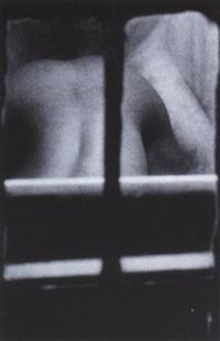 dirty window by merry alpern