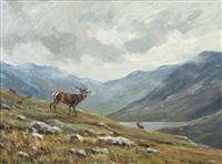 roaring stag by william ellis barrington-browne