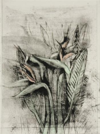 a temple flora (strelitzia) by jim dine