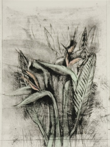 a temple flora strelitzia by jim dine
