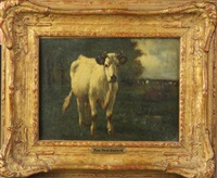 cow in pasture by marie dieterle