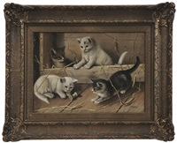 kittens playing by franklin harrison miller