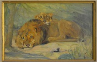 lion and lioness by cuthbert edmund swan