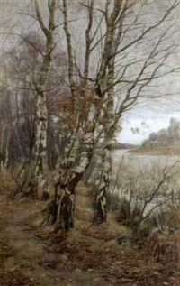 birch trees at upperpond, burnham beeches by a. lee rogers