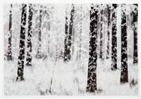 snowstorm in dragsvik by christoffer relander