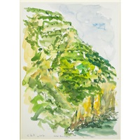 hotel san pietro (cliffs over paradise) by elaine de kooning
