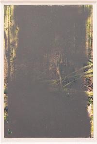 26.01.08 (aus der serie grauwald) by gerhard richter